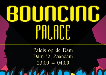 Bouncing Palace Flyer